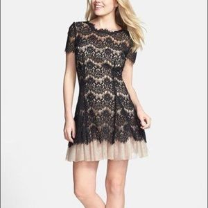 Short Sleeve Fit & Flare Lace Dress